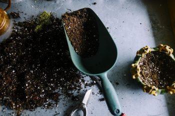 High quality fertiliser/compost of local origin